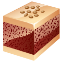 Nuts cake icon