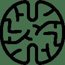 Brain 2 icon