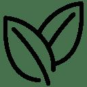 Leafs icon
