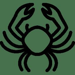 Cancer 2 icon
