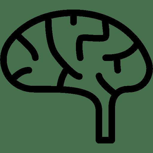 Brain-2-2 icon