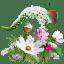 Flowers Wildflowers icon