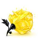 Box 23 Rose Yellow icon