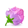 Box-22-Rose-Pink icon