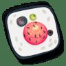 Sushi-17 icon