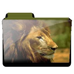 Lion folder icon