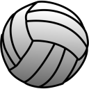 Volleyball icon