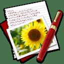Diary Photo Sunflower icon