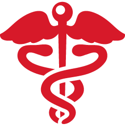 Health Sign red icon