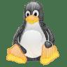 Linux-tux icon