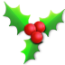 Holly-light icon