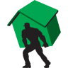 Carry-home-green icon