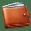 Money wallet icon