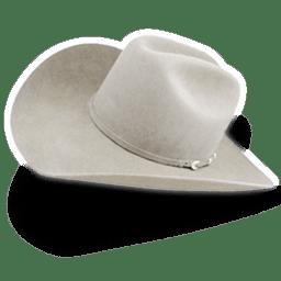 Hat cowboy white icon