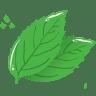 Mint-leaf icon