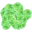 Brussels Sprout icon
