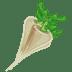 Raphanus icon
