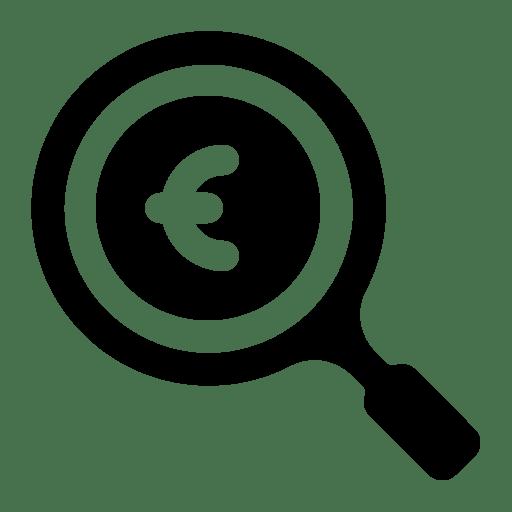 Search-euro icon