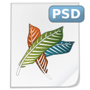 Mimetypes psd icon