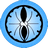 Blue-Icho icon