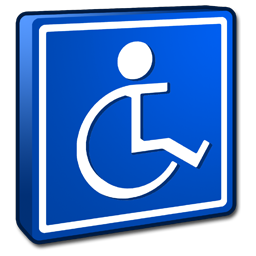 System Accessibility icon