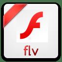 Flv icon
