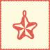 Decoration-star icon