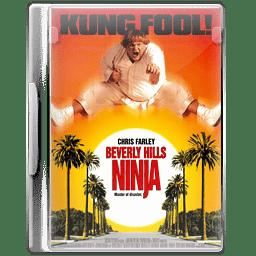 Beverly ninja icon