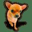 Puppy-3 icon