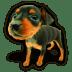 Puppy-7 icon