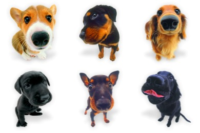 Dogs N Puppies Icons