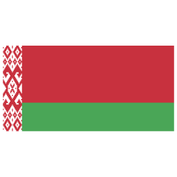 BY Belarus Flag icon