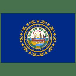 US NH New Hampshire Flag icon