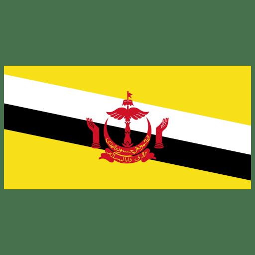BN Brunei Flag icon