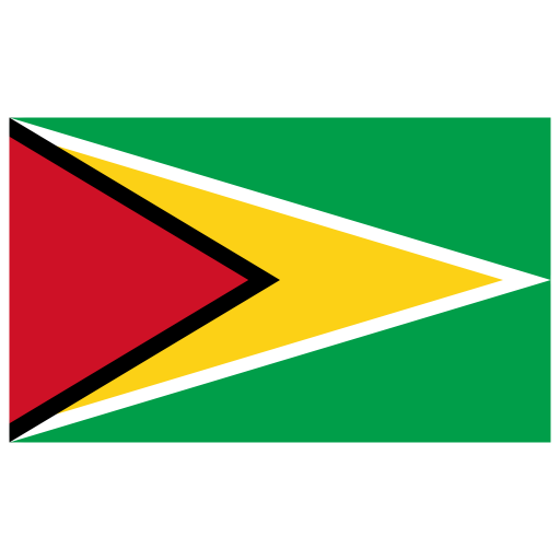 GY Guyana Flag icon