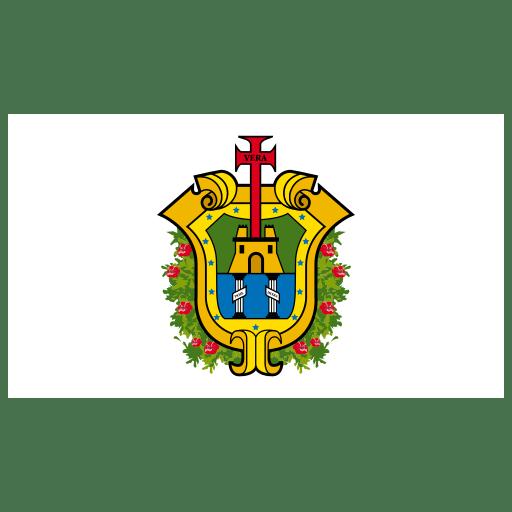 MX VER Veracruz Flag icon