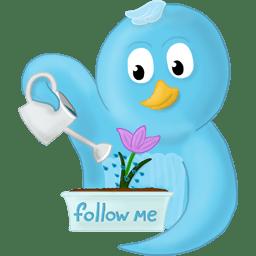 Spring flower follow me icon