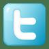 Social-twitter-box-blue icon