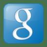 Social-google-box-blue icon