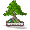 Bonsai-Final icon