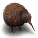 Kiwi Flightless Bird icon